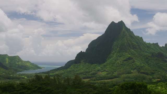 time lapse of wind blowing trees in lush green mountain landscape near bay / moorea, french polynesia - moorea stock videos and b-roll footage