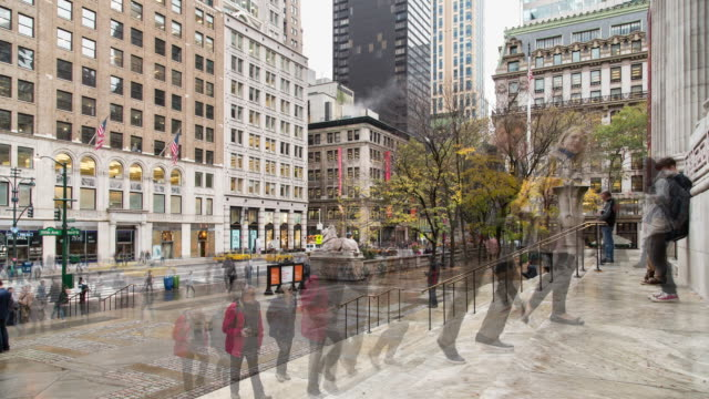 time lapse on a fall day of traffic along 5th ave from the steps of the new york public library's main entrance, featuring people entering and exiting - filiz stock videos & royalty-free footage