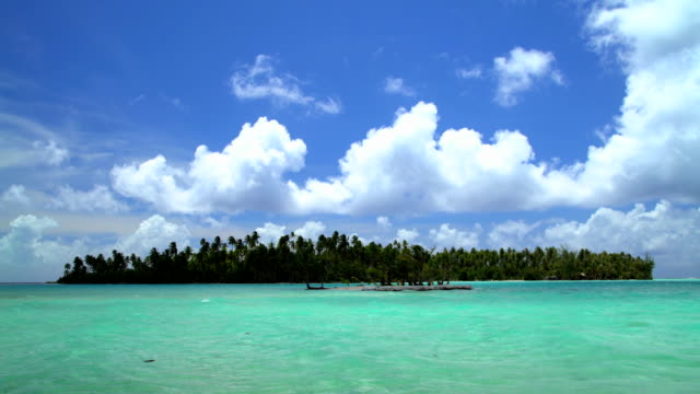 time lapse palm trees aquamarine lagoon bora bora - polynesischer abstammung stock-videos und b-roll-filmmaterial