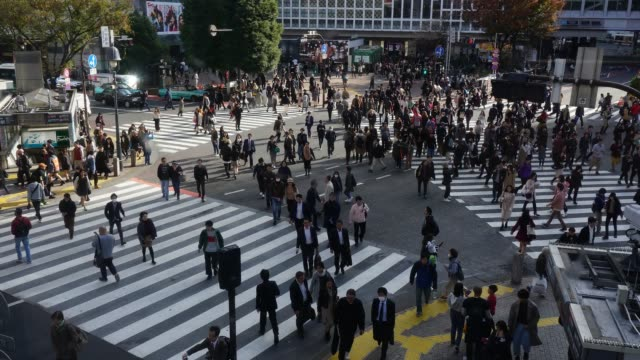 time lapse people crowd shopping street aerial view pedestrians crossing shibuya crosswalk car traffic tokyo city - crossing stock videos & royalty-free footage