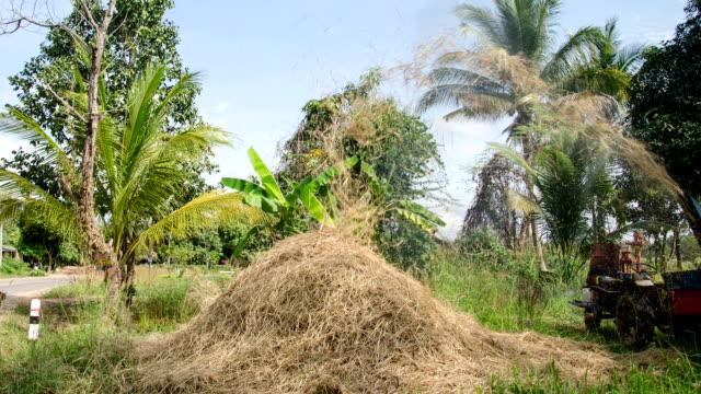 Zeitraffer: Reismühle, Erntemaschine