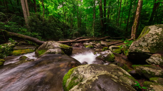 Time lapse sequence of water flowing over rocks in the New River Gorge National Park.