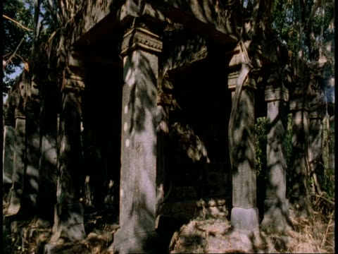 ms time lapse shadows moving over temple in jungle, bandhavgarh national park, india - root stock videos and b-roll footage