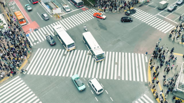 time lapse shibuya cross-walk - shibuya crossing stock videos & royalty-free footage