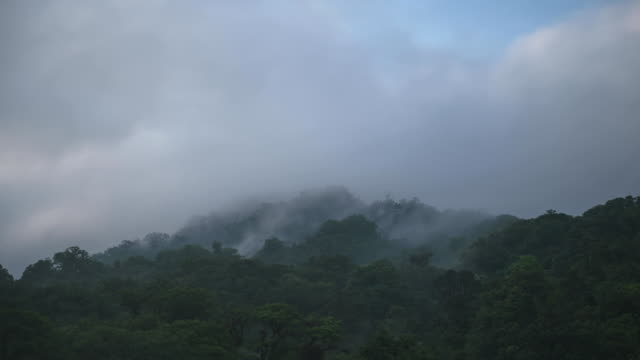 Time lapse shot of clouds scudding over the forest canopy of the El Triunfo biosphere reserve.