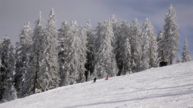 time lapse shot of people skiing down slope on hornspitz mountain / dachstein-west, austria - アッパーオーストリア点の映像素材/bロール