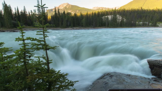 time lapse shot of river flowing near forest and mountains against sky - jasper national park, canada - jasper national park stock videos & royalty-free footage