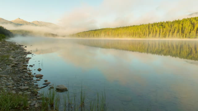 time lapse shot of trees and mountains reflection on patricia lake against sky - jasper national park, canada - jasper national park stock videos & royalty-free footage