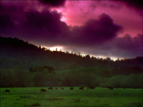 time lapse silhouette of clouds over sierra nevada mountains and field with cows / california - romantische stimmung stock-videos und b-roll-filmmaterial