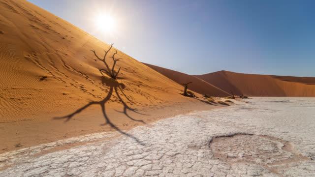 vidéos et rushes de ms time lapse soleil sur deadvlei pan d'argile blanche, namibie, afrique - dune de sable