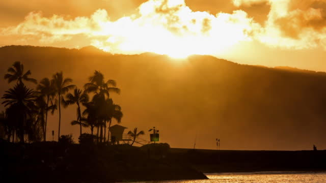 stockvideo's en b-roll-footage met time lapse sun setting at haleiwa bay with palm trees silhouetted - oahu