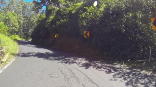 vídeos de stock, filmes e b-roll de time lapse: sunny tree-surrounded road next to steep mountain - boa postura