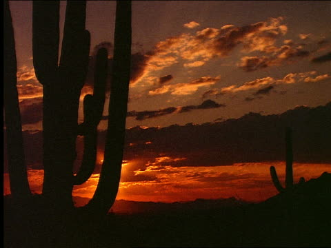 vídeos de stock, filmes e b-roll de time lapse sunset over desert with silhouette of clouds in foreground - céu romântico