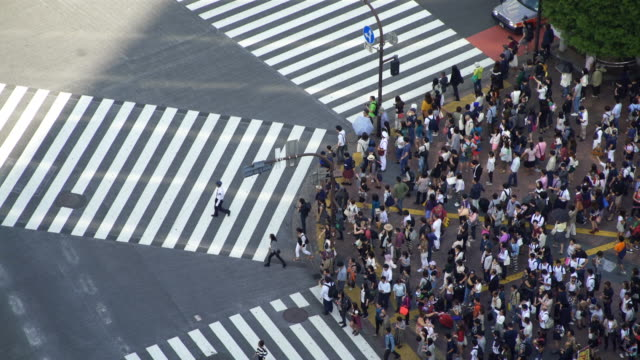 time lapse tokyo shibuya crossing - large group of people stock videos & royalty-free footage