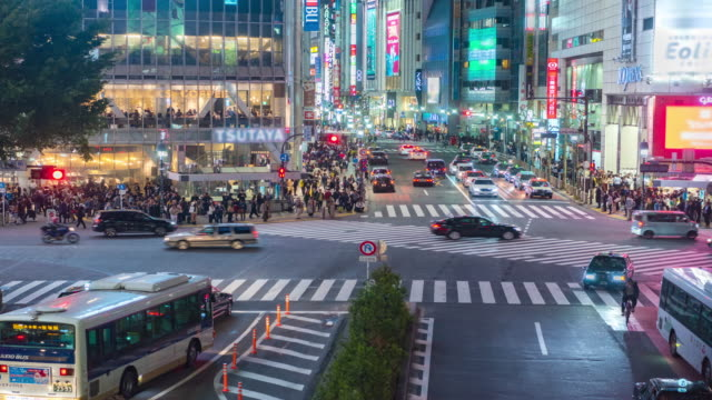 4k time lapse : tokyo's shibuya pedestrian crossing also known as shibuya - organised group stock videos & royalty-free footage