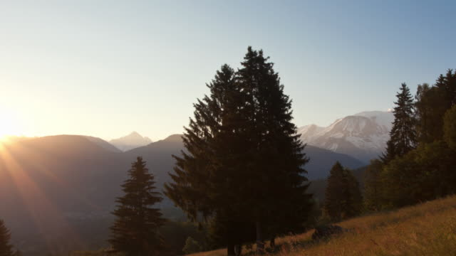 time lapse tracking shot night to day in front of mont blanc chain - fir tree stock videos and b-roll footage