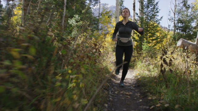 time lapse tracking shot of runner on remote trail / american fork canyon, utah, united states - american fork canyon bildbanksvideor och videomaterial från bakom kulisserna