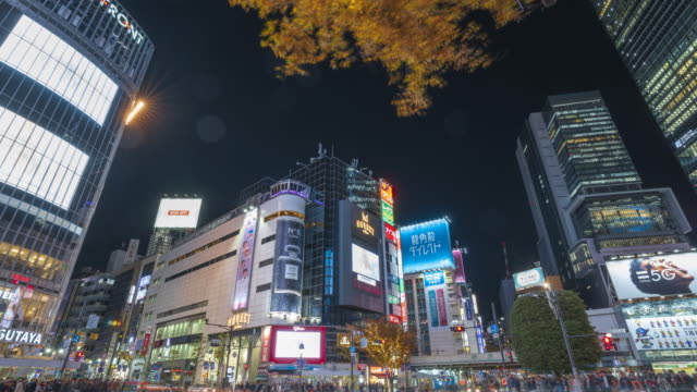 4k time lapse traffic and pedestrians with umbrellas in crosswalk at shibuya crossing at night, tokyo - busy stock videos & royalty-free footage
