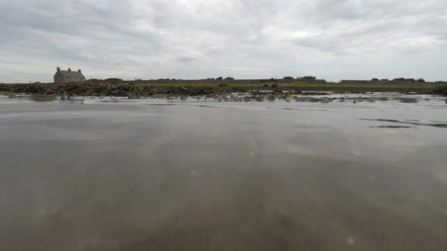 a time lapse under water close up view of seaweed and sand moving in the current as the tide goes out the seaweed comes to rest and the sky and land are revealed - tide stock videos & royalty-free footage