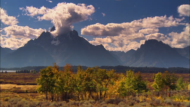 Time lapse wide shot clouds moving across peak of large mountain with cluster of trees in foreground / Yellostone National Park, Wyoming