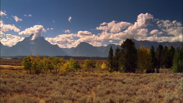 time lapse wide shot clouds moving over grand tetons with trees and golden foliage in foreground / wyoming - grand teton stock videos & royalty-free footage