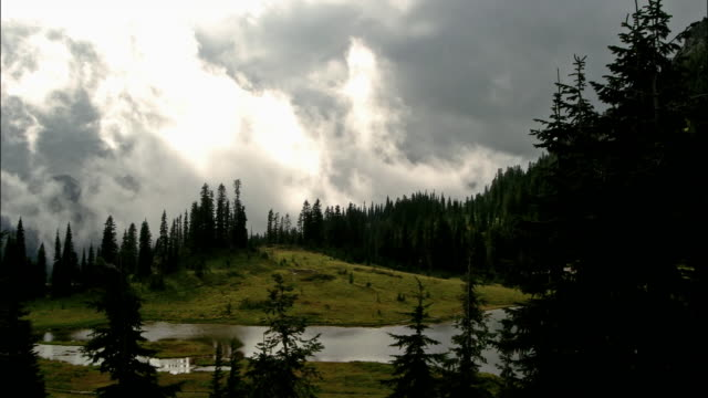 Time lapse wide shot clouds passing over pine trees and river / dawn to day / Mount Ranier National Park, Washington
