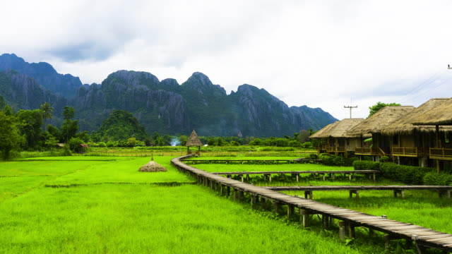 time lapse zoom in views of the rice field and mountains of vang vieng in laos. - shack stock videos & royalty-free footage