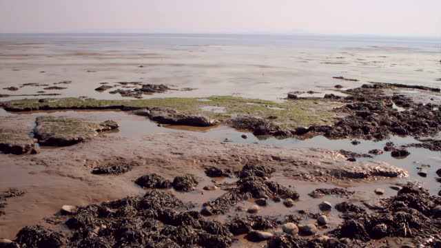 time lapses tide coming in at the wash, norfolk - rhythm stock videos & royalty-free footage