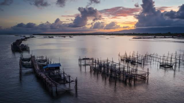 vídeos de stock e filmes b-roll de 4 k timelapse-marisco exploração no golfo da tailândia. - rebento de bambu
