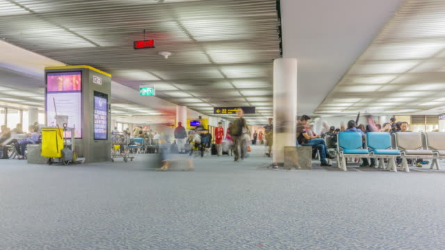 4k timelapse airport passenger terminal - airline check in attendant stock videos and b-roll footage