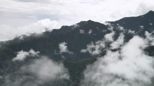 Timelapse cloud billows over moist cloud forest, Ecuador