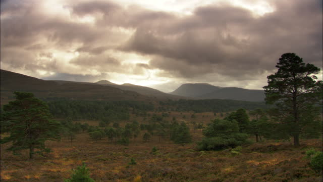 timelapse cloud drifts over autumnal hills, scotland, uk - hill stock videos & royalty-free footage