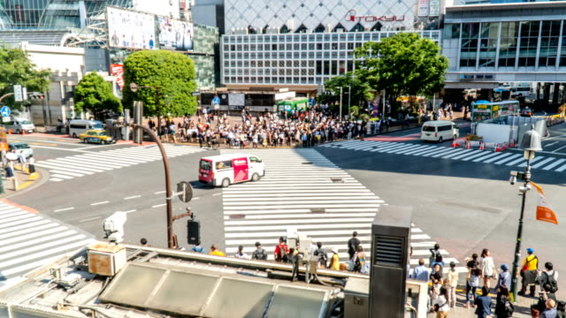 timelapse - crowd of people on traffic light  in shibaya crossing - ginza stock videos & royalty-free footage