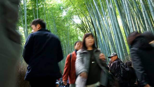 timelapse crowd people at Arashiyama bamboo forest