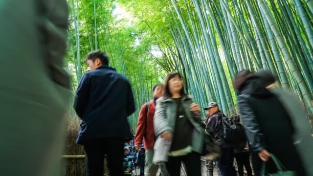 timelapse drukke mensen op Shee Bamboo Forest