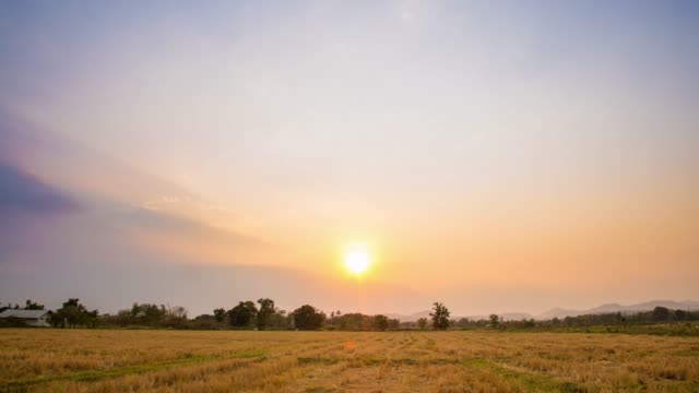 4K Time-lapse : Field agricultural and Day to Sunset Time-lapse.