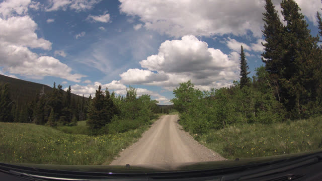 Timelapse POV from vehicle driving through Glacier National Park, Montana, USA
