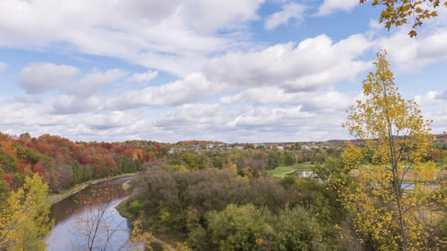 4k time-lapse: grand river bend - maple tree stock videos and b-roll footage