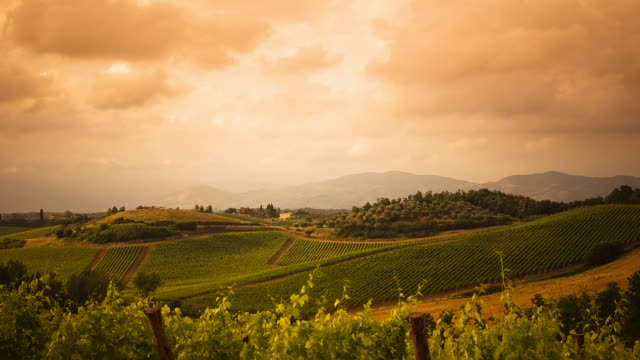 HD :Timelapse in Tuscany vineyard before thunderstorm