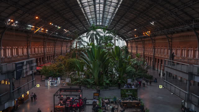 timelapse inside of atocha tropical garden in madrid - railway station stock videos & royalty-free footage