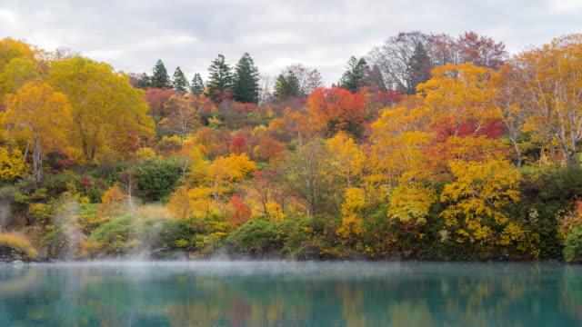 time-lapse: jigoku numa lake at hakkoda red leave forest, aomori japan - maple stock videos & royalty-free footage
