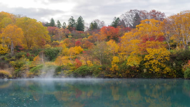 time-lapse: jigoku numa lake at hakkoda red leave forest, aomori japan - autumn leaf color stock videos and b-roll footage