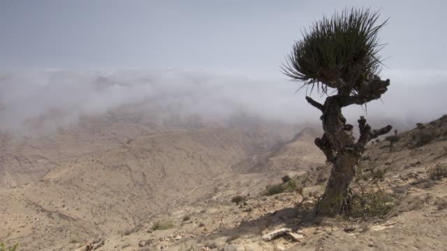 timelapse khareef monsoon mist drifts over mountains, oman - oman stock-videos und b-roll-filmmaterial