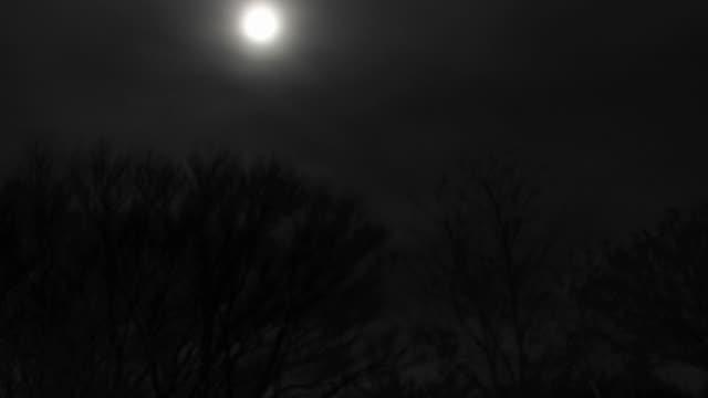 Timelapse Luna llena, cabaña con estrellas de noche
