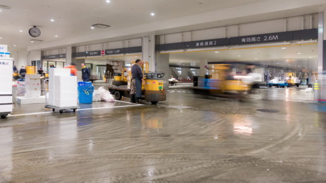 zeitraffer: händler und arbeiter auf dem toyosu fish market tokio japan überfüllt - clip stock-videos und b-roll-filmmaterial