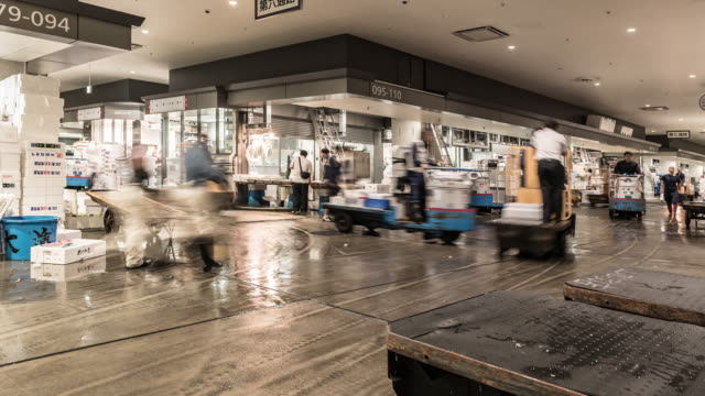time-lapse: merchant workers and customers crowded at toyosu fish market in morning time,tokyo japan - fish market stock videos and b-roll footage