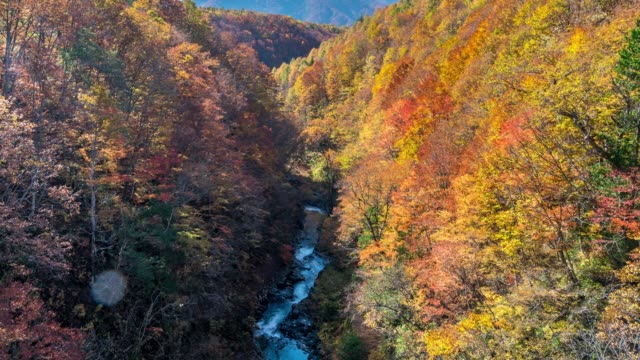 time-lapse: nakatsugawa bridge with autumn red leave forest, aizuwakamatsu, fukushima japan - canyon stock videos & royalty-free footage