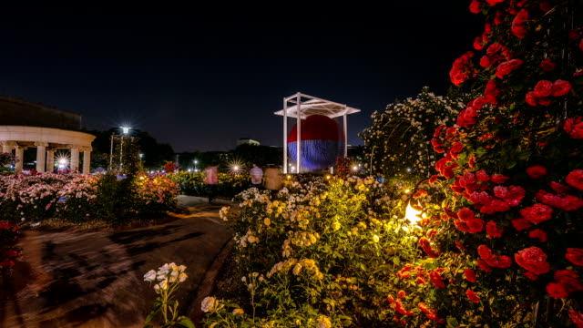 Time-Lapse night scene of Rose Garden at Olympic Park in Seoul