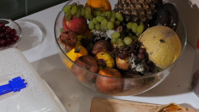 time-lapse of a bowl filled with decaying fruit covered in fruit flies - fruit bowl stock videos & royalty-free footage