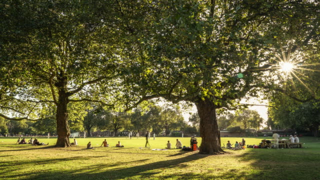 time-lapse of a cricket match in london fields park hackney e8 - domenica video stock e b–roll